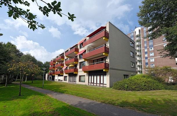 Lunshof makelaars Amstelveen en Amsterdam - Logger 245   Amstelveen